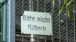 Please do not feed sign in German Zoo 4k