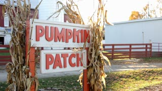 Pumpkin patch sign blowing in wind