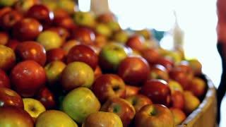 Rack focus of apples at market