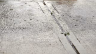Rain drops landing on concrete in slow motion