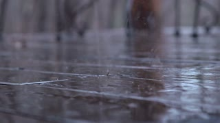Rain on wooden patio deck