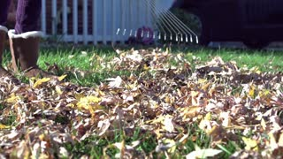 Raking leaves in slow motion
