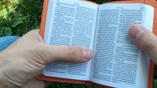 Reading through miniature bible in grass