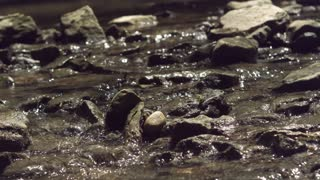 Rocks in creek bed with water flowing by slow motion