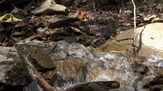 Rushing water flowing through creek 4k