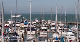 San Francisco sail boat harbor 4k