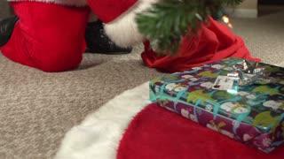 Santa placing gifts under christmas tree