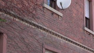 Satellite dish on window exterior of apartment 4k