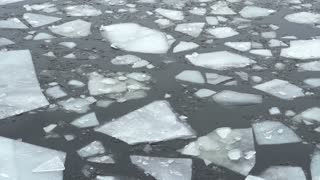 Slow moving frozen slabs of ice floating by