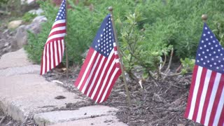 Small American Flags in Flower Bed2