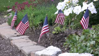 Small American Flags in Flower Bed