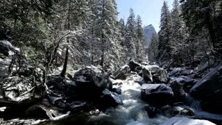Snow in mountain forest with river