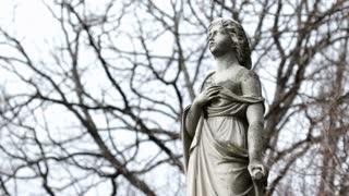 Statue standing in woods