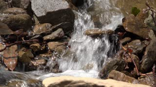 Stream flowing through rock ground in woods 4k