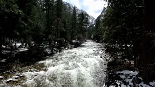 Stream in woods with mountain in background