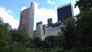 Sunny day in Central Park NYC 4k