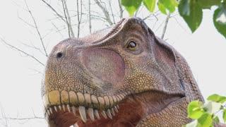 T-rex dinosaur in nature like scene 4k