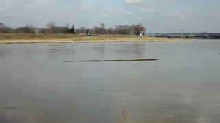 Tacking Log Floating in Water