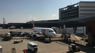 TAM airlines preparing at Sao Paulo Guarulhos International Airport 4k