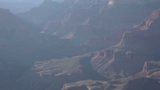 Tracking Hawks flying in Grand Canyon