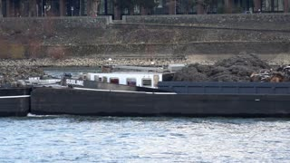 Trash barge going through Cologne on Rhine 4k