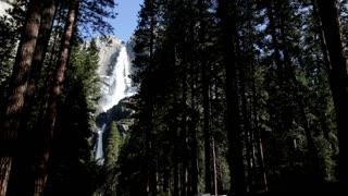 Upper Yosemite falls seen from woods