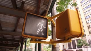 Crosswalk signal light in downtown Manhattan