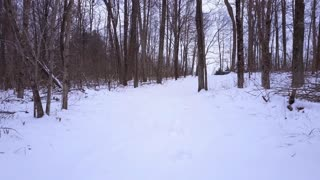 Following footsteps in snow covered path 4k