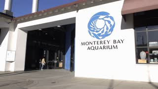 Monterey Bay Aquarium exterior entrance establishing shot 4k