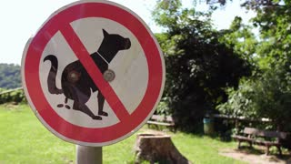 No animal pooping sign in park 4k
