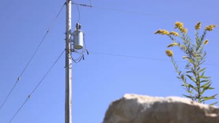 Power pole establishing shot out in nature 4k