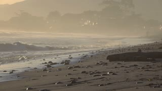 Quiet morning ocean waves on beach 4k