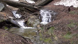 Sequoia National Forest with melting snow creating stream 4k