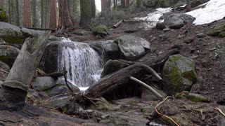 Small waterfall in Sequoia National Forest during winter 4k