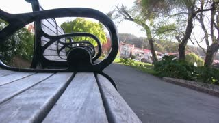 View from Park Bench