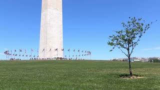 Visitors at Washington Monument base walking in grass 4k