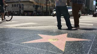 Walk of fame stars on sidewalk