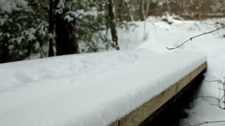 Walking across snow covered bridge