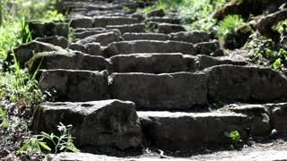 Walking up Brick Steps