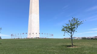 Washington Monument tilt from grass to top 4k