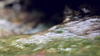 Water flowing in stream shallow depth of field