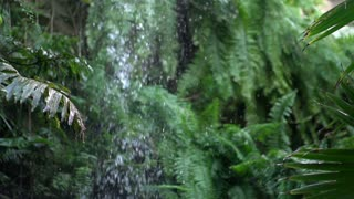 Waterfall in jungle falling in slow motion