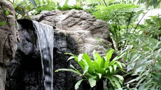 Waterfall in jungle scene