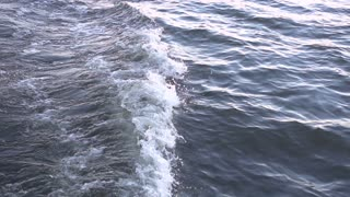 Waves from boat on water in slow motion
