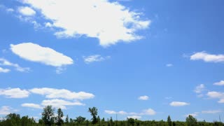 Wide open forest area with cloud formations above on blue sky 4k