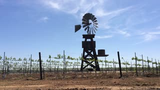 Windmill rotating in wind of vineyard field.