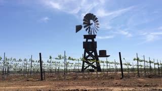 Windmill rotating in wind of vineyard field.