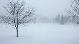 Winter blizzard weather blowing snow around 4k
