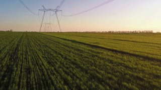 Aerial syrvey - flying over the power lines along the green field at sunset