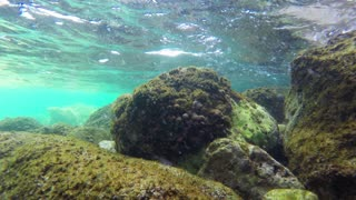 Diving Underwater footage Shot in Montenegro, Adriatic sea